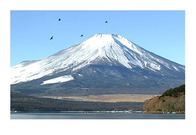 テラスダイニング シェフズレシピの周辺観光 富士山